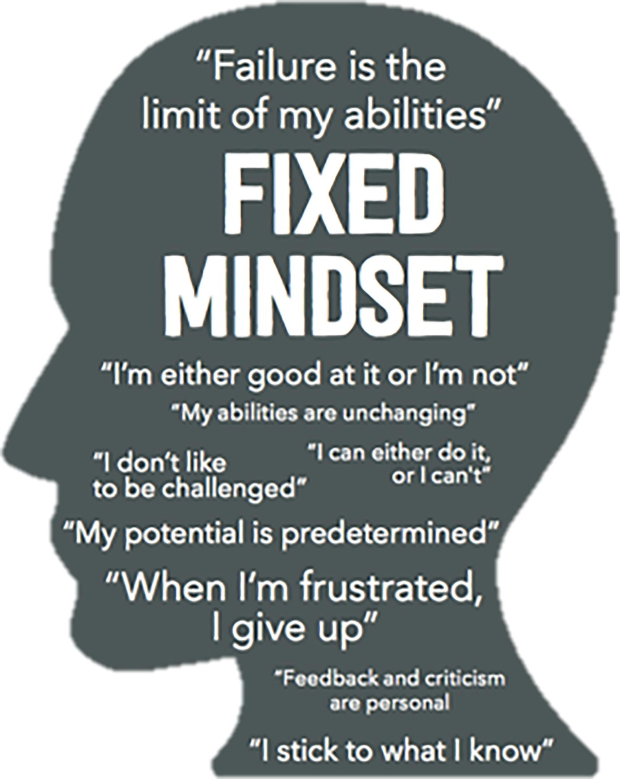 Growth Mindset and the Power of Yet (1) Blog by Carmel New Church School
